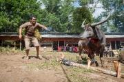 Indonesia_Sulawesi_Tona_Toraja_Funeral_FAB4101