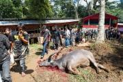 Indonesia_Sulawesi_Tona_Toraja_Funeral_FAB4200