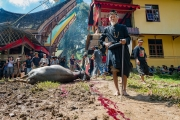 Indonesia_Sulawesi_Tona_Toraja_Funeral_FAB4141