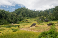 Indonesia_Sulawesi_Tona_Toraja_FAB5126