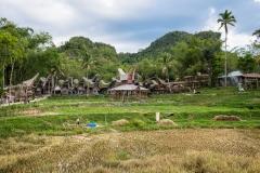 Indonesia_Sulawesi_Tona_Toraja_FAB5245