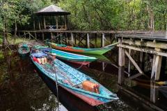Indonesia_Borneo__FAB3130