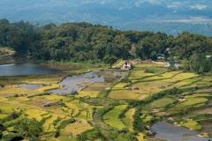 Indonesia_Sulawesi_Tona_Toraja_FAB5188